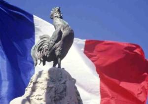 Le coq, el gallo francés.