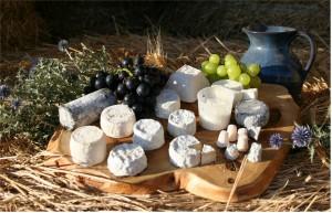 Un hermoso bodegón con un puñado de las variedades de quesos de cabra de Francia.