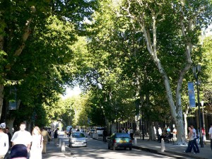 La arteria más animada de la ciudad un buen preludio para adentrarse en la zona vieja.