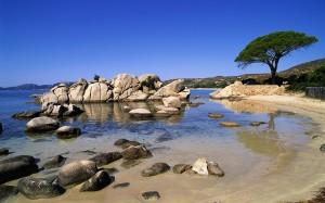 La preciosa playa de Palombaggia, cerca de Porto Vecchio, una muestra de la belleza del litoral corso.