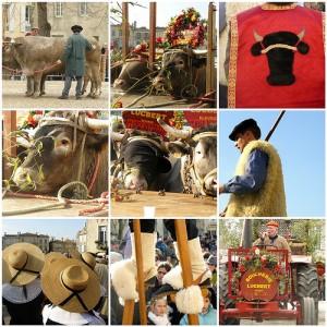 Fiesta del boeuf gras en Bazas, cerca de Burdeos.