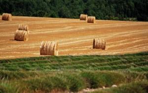 Los peligros del gas de esquisto, el Midi de Francia amenazado